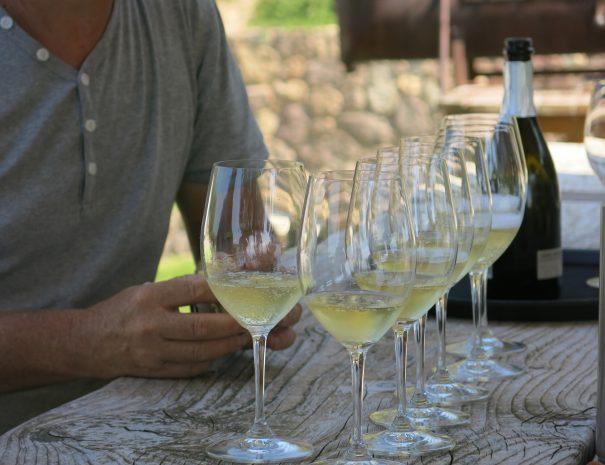 degustazione vino bardolino