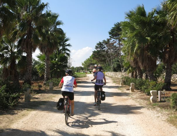 Bike tour in Apulia near Bari