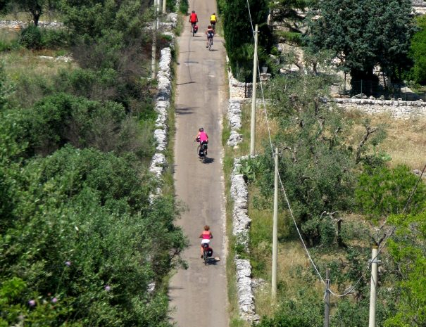 Bike tour in Apulia close to Matera