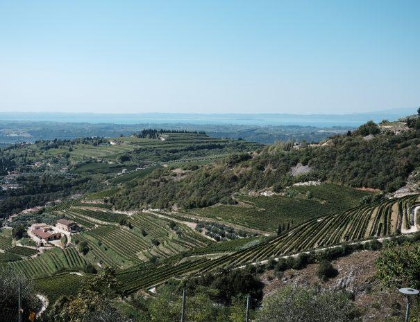 panorama -valpolicella