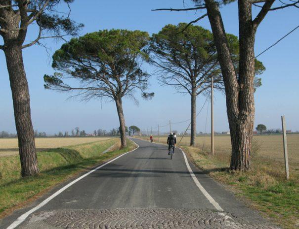Aquileia-Grado-in-bicicletta_20